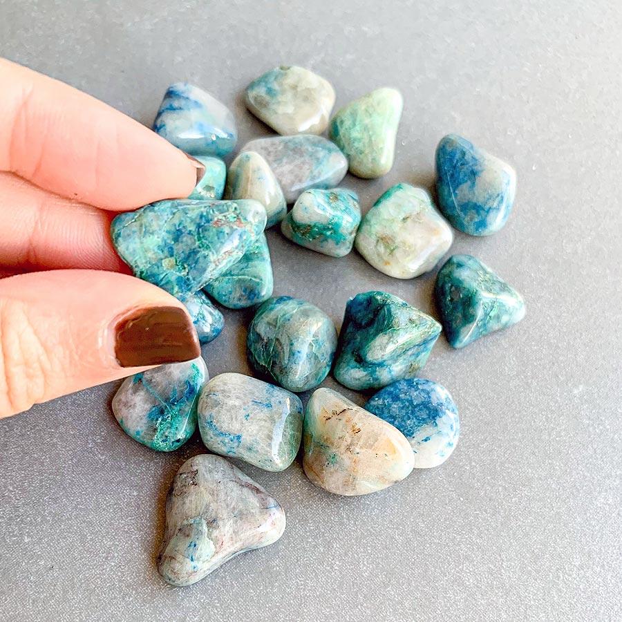quantum quattro surya cristais